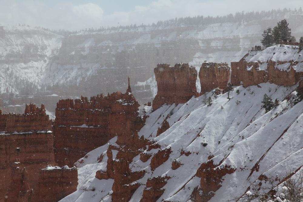 David Albeck's Photos of Winter Scenes